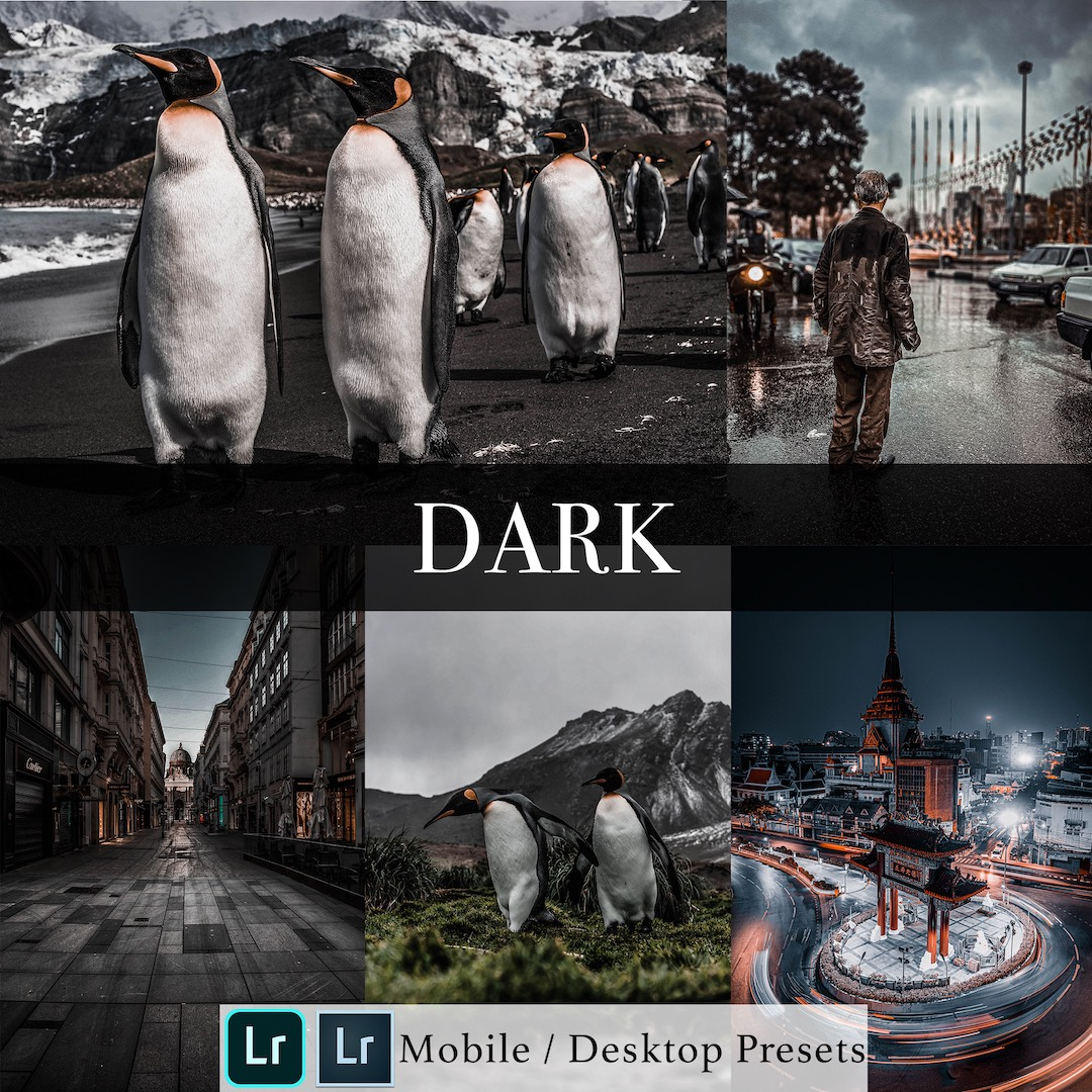 Michael Sousa Dark Presets Cover