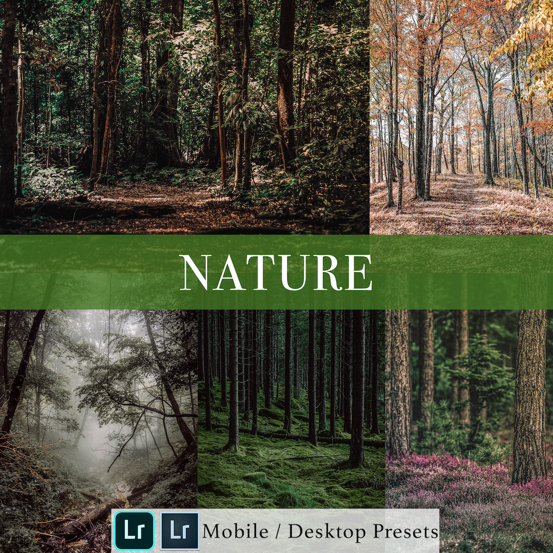 Michael Sousa Nature Presets Cover